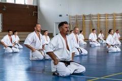 Internationaal de karate van de zomerkyokushinkai opleidingskamp in Hongarije Stock Foto