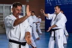 Internationaal de karate van de zomerkyokushinkai opleidingskamp in Hongarije Royalty-vrije Stock Foto's