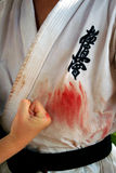 Internationaal de karatezomer opleidingskamp 2008 in Alushta Royalty-vrije Stock Foto's