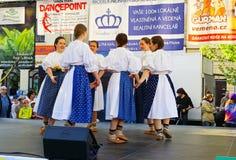 Internationaal folklorefestival CIOFF 2014 Royalty-vrije Stock Fotografie