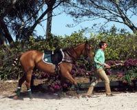 Internationaal Polo Club - Wellington, Florida - Joe Stock Afbeeldingen