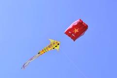 Internationaal Vliegerfestival in Ahmedabad Royalty-vrije Stock Foto