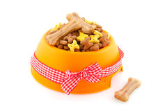 International animal day. Dog food for international animal day decorated with bow Royalty Free Stock Photography