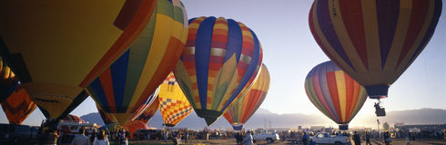 International Balloon Fiesta, Royalty Free Stock Photos