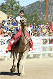 International Camel Races in Virginia City, NV, US Royalty Free Stock Image