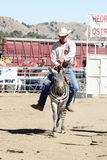 International Camel Races in Virginia City, NV, US Royalty Free Stock Images