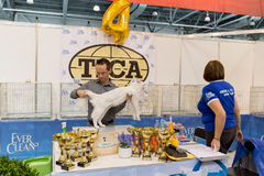 International Cat Show Ketsburg at  Crocus Expo in Moscow, Russia Royalty Free Stock Photos
