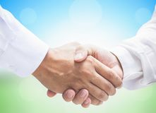 International Co-operative Day Concept: Business Persons Handshake Together Peacefully. Concept of Jesus entering Jerusalem: Palm leaves on a blue background sky royalty free stock photo