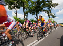 International cycle race Stock Images