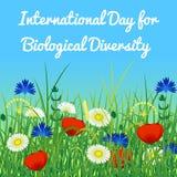 International Day for Biological Diversity. Sky and wild grass and flowers. International Day for Biological Diversity. The concept of ecological holiday. Sky royalty free illustration