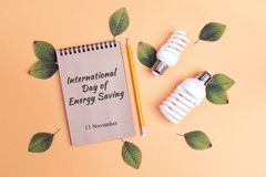 International day of energy saving concept. Energy saving lightbulb with green leaves and notebook. Flat lay, top view royalty free stock photo
