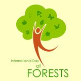 International Day of Forest Stock Images
