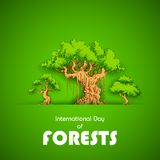 International Day of Forest Stock Photography