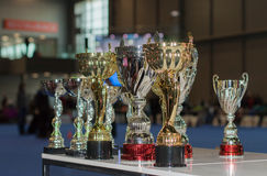 International dog show Duo CACIB in Brno Royalty Free Stock Image