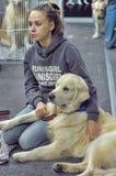 International dog show Royalty Free Stock Photos