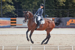 International Dressage Royalty Free Stock Photos