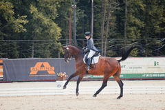 International Dressage Stock Images