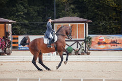 International Dressage Vivat, Russia! Royalty Free Stock Images