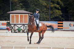 International Dressage Vivat, Russia! Stock Photo