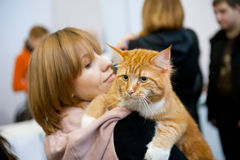 International exhibition of cats. MOSCOW - MARCH 6: Unidentified people visit an international exhibition of cats Catsburg on March 6, 2011 in the exhibition stock image