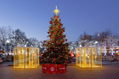 International Festival Christmas light, Moscow, Novopushkinsky park Royalty Free Stock Photo
