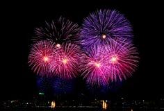International firework in Pattaya, Thailand. Firework has the colors like Thai flag Stock Image