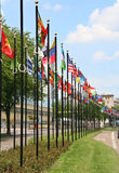 International Flags in The Hague, Holland Stock Photography