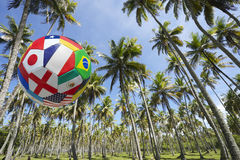 International Football Soccer Ball Flying in Brazilian Palm Grove Stock Images