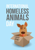 International homeless animals day. Cute dog in a box whith I Need Home text. Pets adoption concept. Poster template. Royalty Free Stock Image