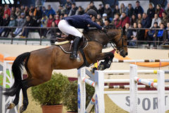 International Jumping Competition Stock Photos