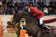 International Jumping Competition Royalty Free Stock Images