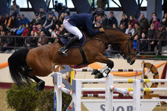 International Jumping Competition Stock Photo