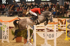 International Jumping Competition Stock Photography