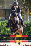 International Jumping Competition Riders veterans Royalty Free Stock Image