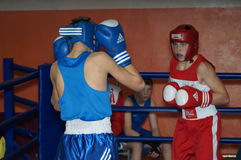 International Junior championship Boxing in Gomel (Belarus). Stock Images