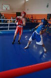International Junior championship Boxing in Gomel (Belarus). Royalty Free Stock Photography