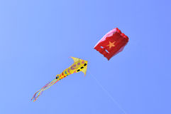 International Kite Festival at Ahmedabad Royalty Free Stock Photo