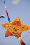 International Kite Festival on March 9th, 2014, Royalty Free Stock Images