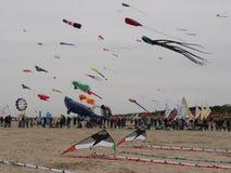 International Kite Festival 2016 Royalty Free Stock Images