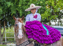 International Mariachi & Charros festival Royalty Free Stock Photos