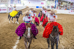 International Mariachi & Charros festival. GUADALAJARA , MEXICO - SEP 01 : Charras participate at the 23rd International Mariachi & Charros festival in Royalty Free Stock Images