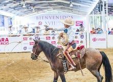 International Mariachi & Charros festival. GUADALAJARA , MEXICO - SEP 01 : Charro Participates in a bull riding Competition at the 23rd International Mariachi & stock photos