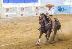 International Mariachi & Charros festival. GUADALAJARA , MEXICO - SEP 01 : Charro participates at the 23rd International Mariachi & Charros festival in stock image