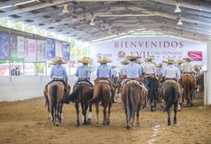 International Mariachi & Charros festival. GUADALAJARA , MEXICO - SEP 01 : Charros participate at the 23rd International Mariachi & Charros festival in stock photography