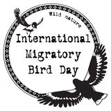 International Migratory Bird Day Royalty Free Stock Images
