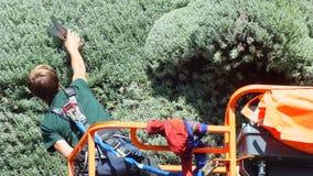 INTERNATIONAL 2013 MOSAICULTURES, САД МОНРЕАЛЯ БОТАНИЧЕСКИЙ, Монреаль, Квебек, Канада Канадский вход: Подрезать мать-земли Стоковое фото RF