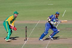 International one-day cricket Royalty Free Stock Photography