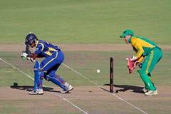 International one-day cricket Royalty Free Stock Photo