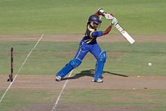 International one-day cricket Royalty Free Stock Images