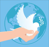 International Peace Day. Globe, pigeon, hand, vector Royalty Free Stock Photography